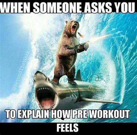 Pre Workout Memes - 25 best ideas about pre workout meme on pinterest funny