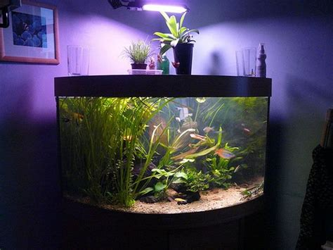good aquarium decorations http monpts com some 14 best aquarium decorations images on pinterest fish