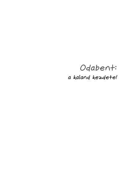 Könyv: Pszichotrükkök 0-3 éves korig (Susanne Valliéres)