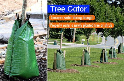 gator tree tree gator essential tree watering bags review