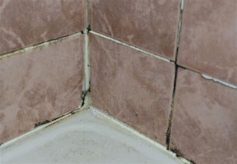 Comment Nettoyer Des Joints De Salle De Bain 4061 by Nettoyer Les Joints De Carrelage De Salle De Bain 5