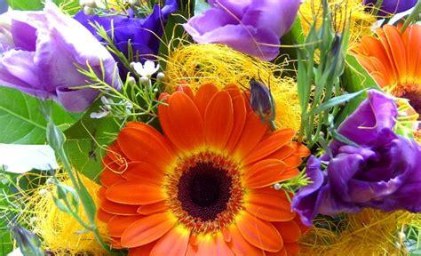 Wedding Bouquet Emulsion by Cb1000r It Leggi Argomento Tanti Auguri A Motard 41