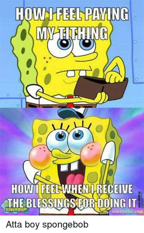 spongbob meme spongebob memes spongebob squarepants pictures