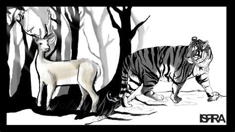 imagenes de venados a blanco y negro hubiera sido incre 237 ble vivir juntos f 225 bula el tigre