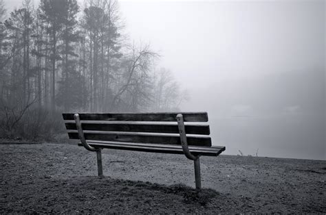 panoramio photo of empty bench a foggy morning on echo