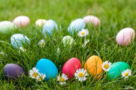 Delightful Easter Egg Hunt Ideas For Church #1: Egg-Hunt.jpg