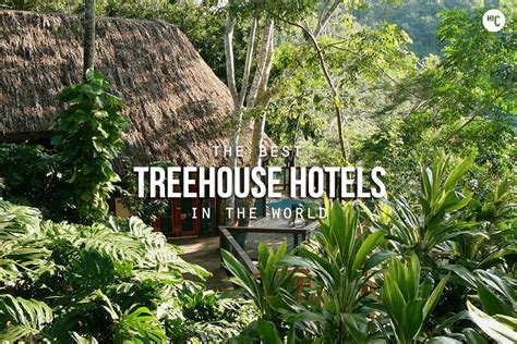 tree house hotel the 20 coolest treehouse hotels in the world hiconsumption