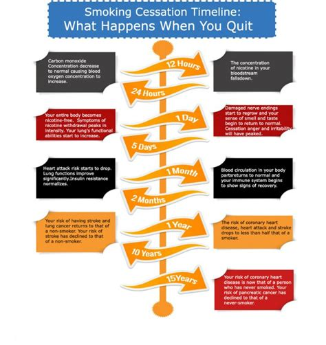 What Happens After Detox by Cessation Timeline Infographics