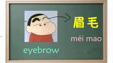 learn  names  body parts  mandarin chinese