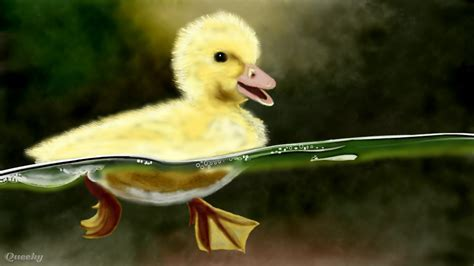 The Little Swimming Duck ? an animals Speedpaint drawing