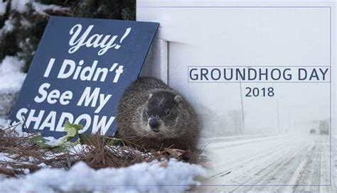groundhog day on tv groundhog day on tv 28 images all you need to about