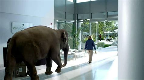 spiriva commercial elephant actress spiriva tv commercial office elephant ispot tv