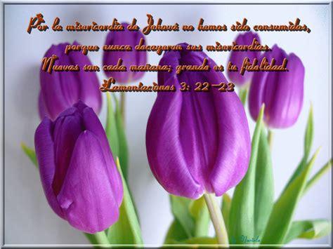 imagenes biblicas de flores im 225 genes cristianas fondo de escritorio flores