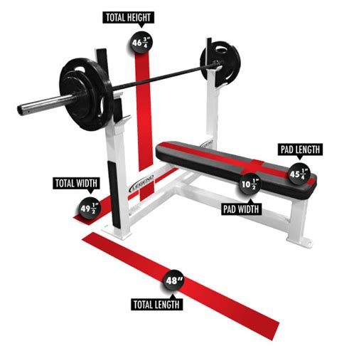standard bench press bar olympic flat bench legend fitness