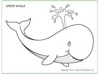 whale template preschool whales printable templates coloring pages