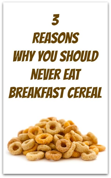 why you eat what you eat the science our relationship with food books what s to eat for breakfast when trying to lose