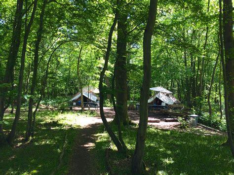 eco camp uk wild boar wood campsite ashdown forest