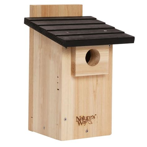 what direction should bluebird house face what direction should bluebird house 28 images diy build a bluebird box audubon