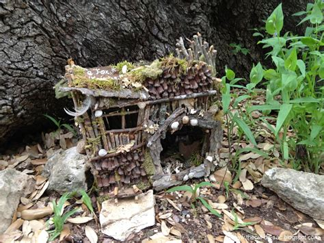 fairy homes the cul de sac from ann arbor to austin scouting for fairies