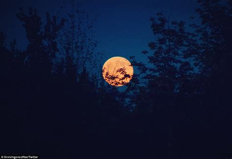 what is a strawberry moon strawberry moon to light up the summer solstice sky for