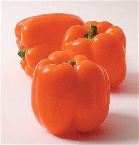 Vitacimin Vitamin C Bungkus kunyit dan kandungan makanan warna orange buahku