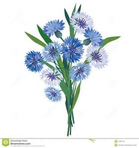 Dusty Miller Flower - blue meadow flower bouquet stock image image 27851761