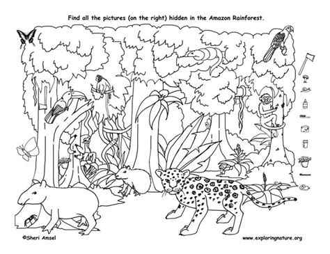 Best 25 Hidden Object Puzzles Ideas On Pinterest Hidden Where Can You Find Coloring Books
