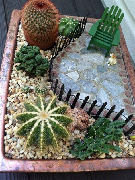 cactus garden ideas the 25 best ideas about mini cactus garden on