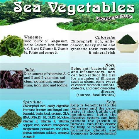 vitamin e vegetables list in tamil health benefits of sea vegetables wakame chlorella