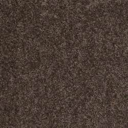 Rite Rug Cincinnati Style 50 S Nutshell Shaw Carpet Rite Rug