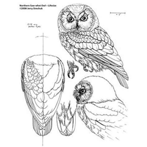 image result   bird wood carving patterns beginner