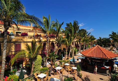 oasis club bungalows maspalomas maspalomas oasis club gran canaria purple travel