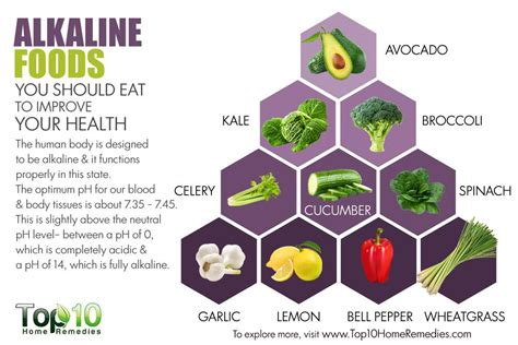how long should you feed shag supplement 10 alkaline foods you should eat to improve your health