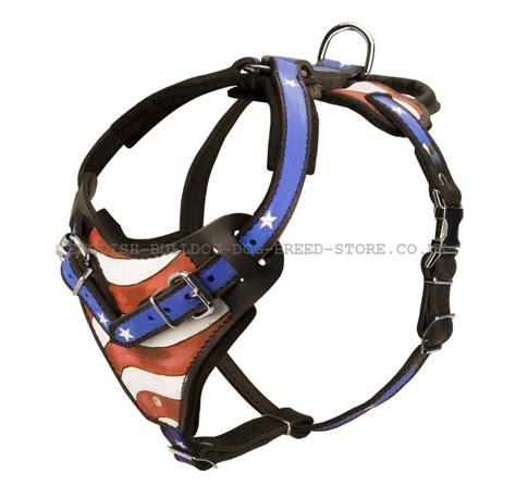Handmade Harness - bulldog harness with usa flag 163 136 80