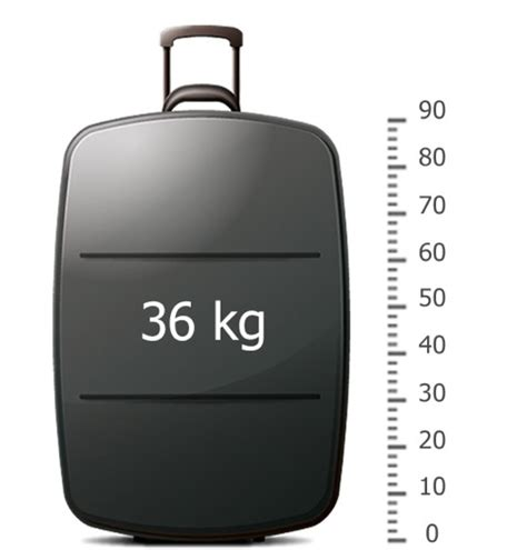 carry on luggage size weight size and weight of luggage f a q russiantrains com