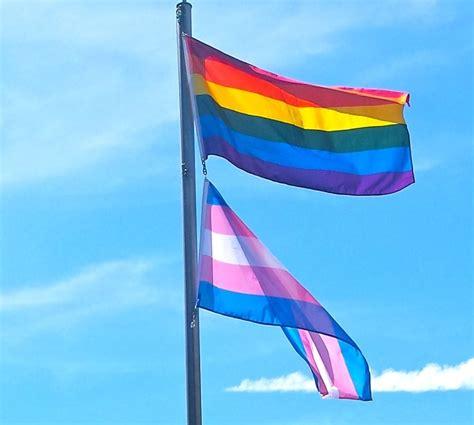Rainbow Trans Pink bill c 16 canada s new federal human rights legislation