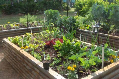 Spring Gardening 10 Best Vegetables To Plant In Spring Growing Vegetable Garden