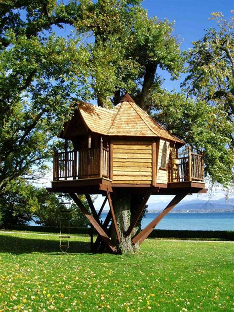 tree house home home styles tree houses style design