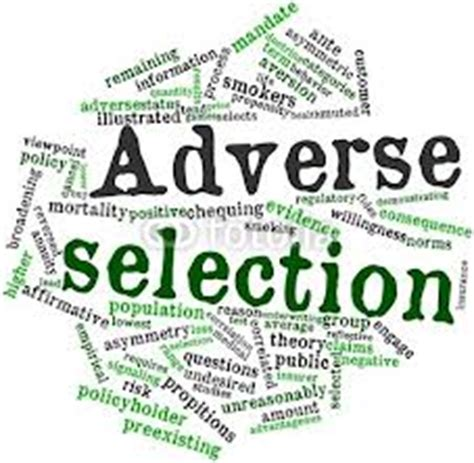 Resume Examples For Banking by Adverse Selection Assignment Point