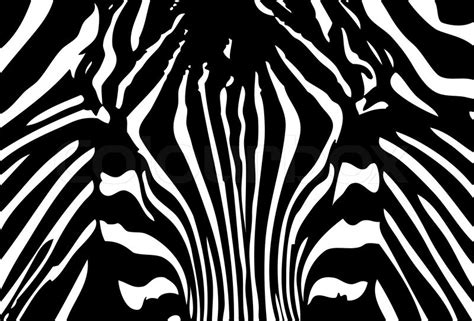 black and white vector wallpaper vector black and white zebra background stock vector
