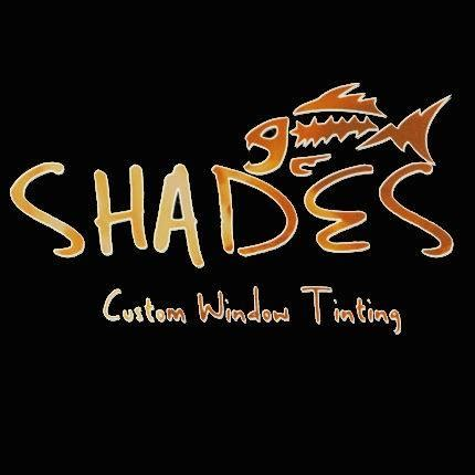 l shades ft myers fl shades custom window tinting in fort myers fl 33908