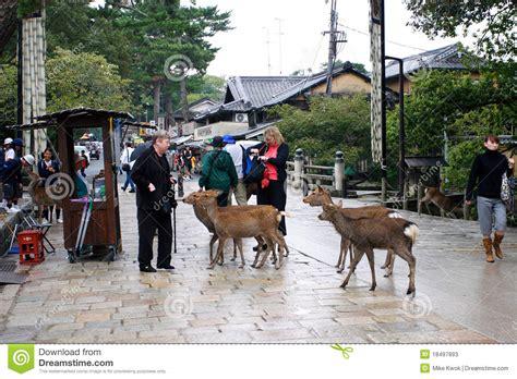 imagenes de nara japon parque de nara foto de archivo editorial imagen de camino
