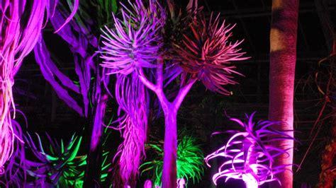botanischer garten münchen lange nacht der museen 11 stationen f 252 r die lange nacht der museen mit