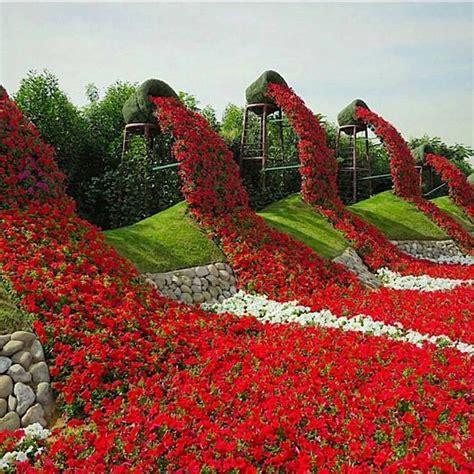 Dubai Flower Garden Miracle Garden In Dubai Beautiful Nature Flowers Travel Garden Places Dubai Garden Formal