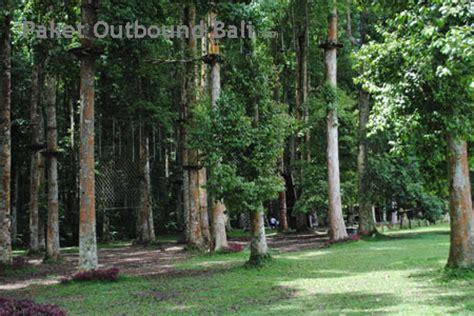 Trees Top Murah paket outbound murah di bali bali treetop team building