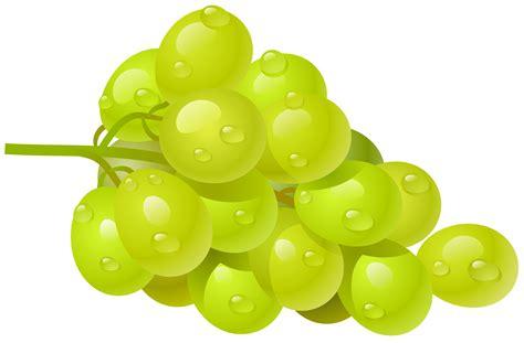 fruit 08 grape grapes grape clipart grapeclipart fruit clip photo 2