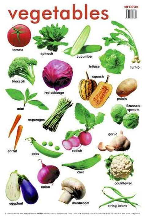 vegetables y frutas en ingles learning is great vegetables and fruits