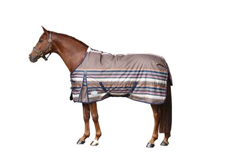Turnout Blanket Clearance by Weatherbeeta Joules Medium Or Pony Turnout Blanket