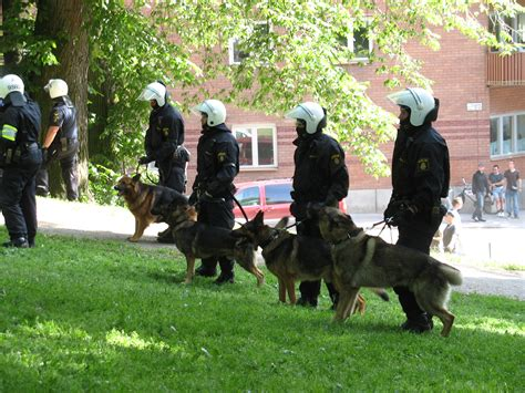 how to k9 a how to become a k 9 officer