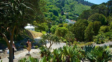Wellington Botanical Gardens Botanic Gardens In Wellington Expedia